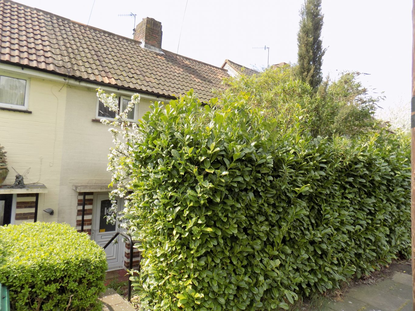 Image of the outside of a terraced house in Brighton | Open House Estate Agents Brighton